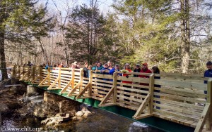 Patrell bridge