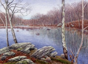 B2.-LYME-beaver-pond-angie-falstrom-1