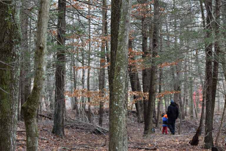 Connecticut Trails Day a chance to show off local hiking spots