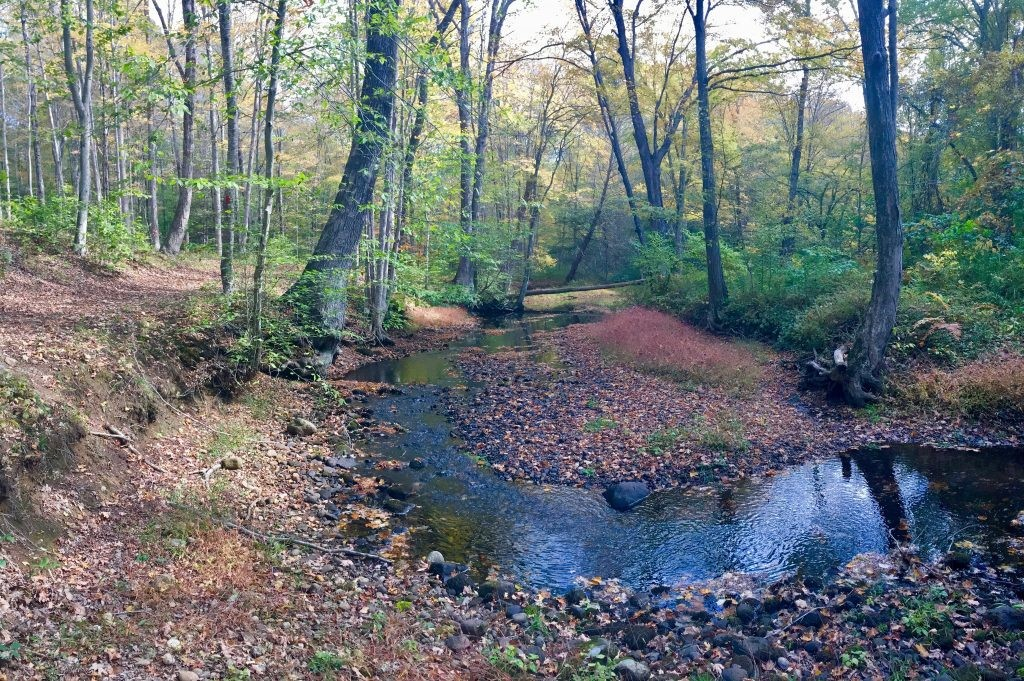 NaturePlace Self-Guided Walk for All Ages Introduced